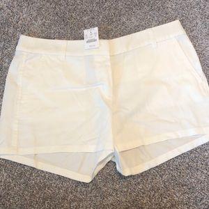 """J Crew 3.5"""" Inseam Shorts"""